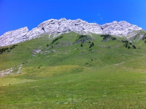 Col des Aravis (16)