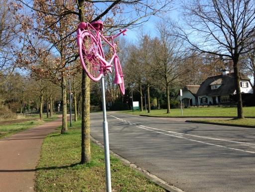 Een van de twee roze fietsen aan het begin van de klim naar de top van de Posbank. Allemaal voor het Giro-peloton dat hier in mei omhoog knalt.