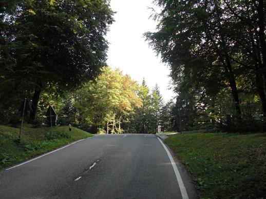 locherbergwasen
